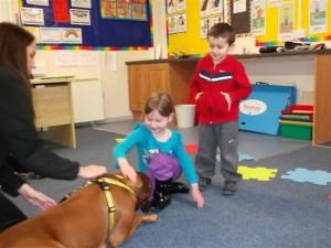 Dog's Trust room 2