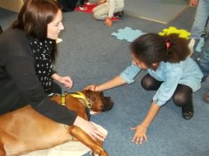 Dog's Trust room 3/4